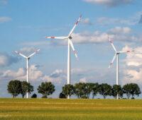 Kleiner Windpark mit Allee