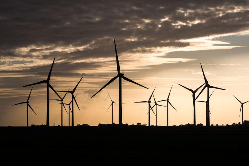 Windpark im Gegenlicht