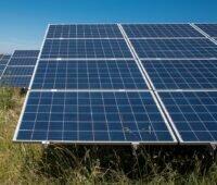 Zu sehen sind Photovoltaikmodule, wie sie beim Photovoltaik-Solarpark Leutershausen zum Einsatz kommen.