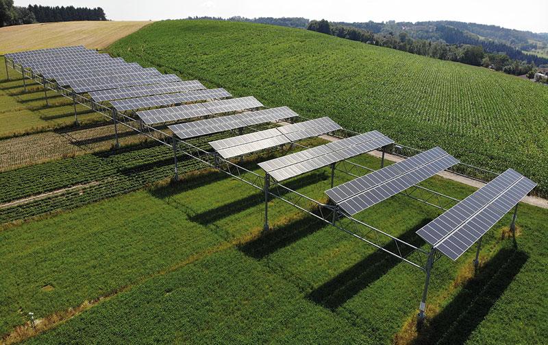 Auf einen hügelig ansteigenden Feld ist eine aufgeständerte PV-Anlage zu sehen.