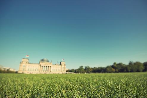 Eine grüne Wiese; im Hintergrund ist unscharf das Reichstagsgebäude zu sehen;