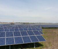 Blick über einen Photovoltaikpark in Ungarn.
