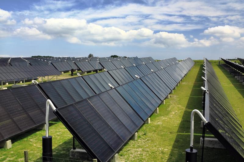 Eine Reihe von Solarthermie-Kollektoren auf einer WIese - Solarthermie statt Strom