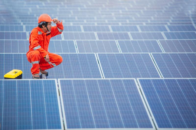 Installateur schaut über eine große Fläche an Solarmodulen