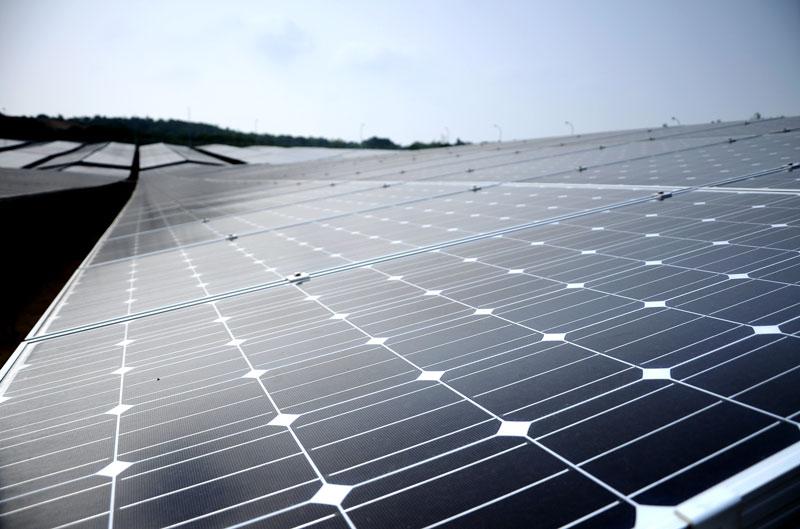 Photovoltaik-Modulreihen in einem Solarpark