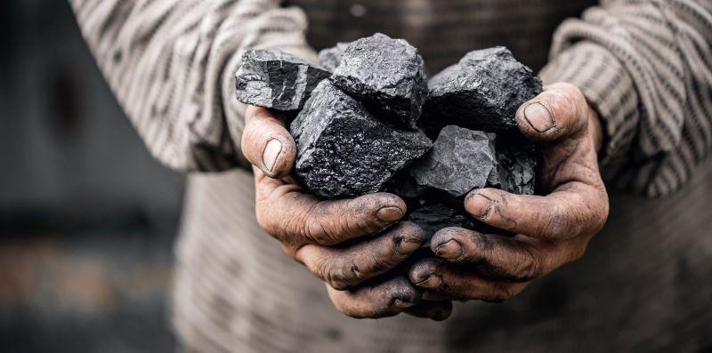 Hände mit mehreren Brocken schwarzer Kohle.