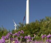 Zu sehen ist Windpark von ERG. Photovoltaik-Großanlagen in Deutschland sollen ein neues Standbein werden.