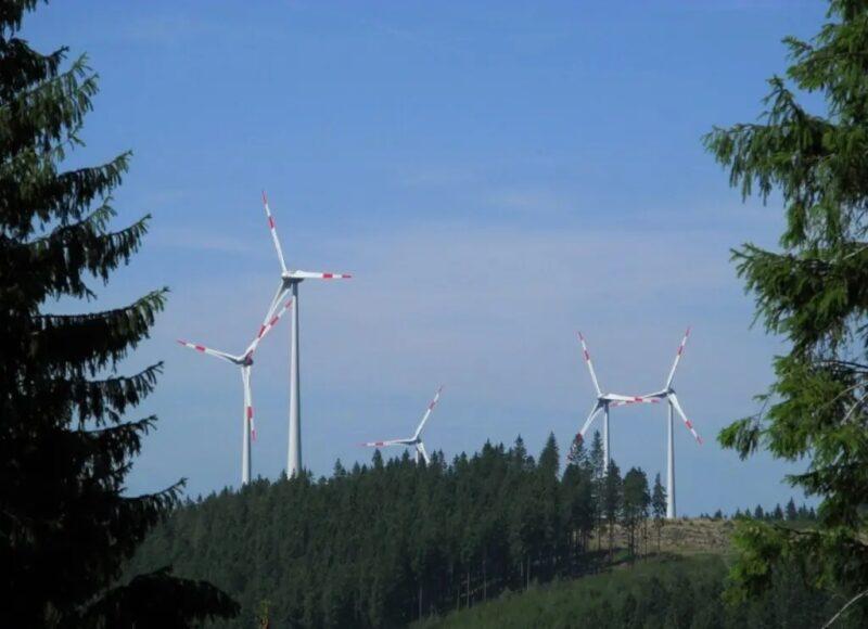 Zu sehen sind Windenergie-Anlagen im Rothaargebirge. Bisher fehlen bundeseinheitliche Regelungen zum Artenschutz bei Windenergie-Genehmigungen.
