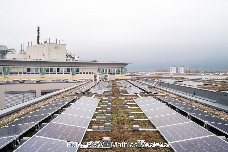 Photovoltaikmodule auf einem begrünten Flachdach in Berlin