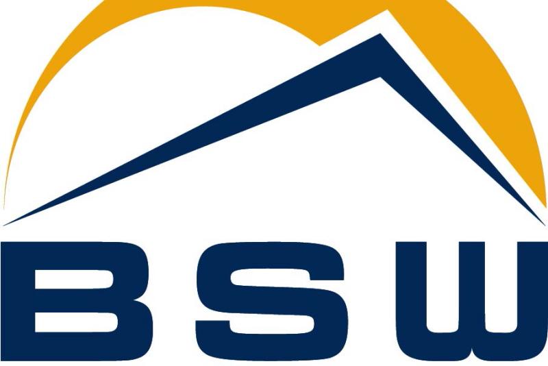 Logo des BSW