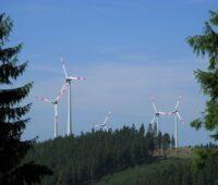 Windenergieanlagen zwischen Fichten auf einer Anhebung im Rothaargebirge.