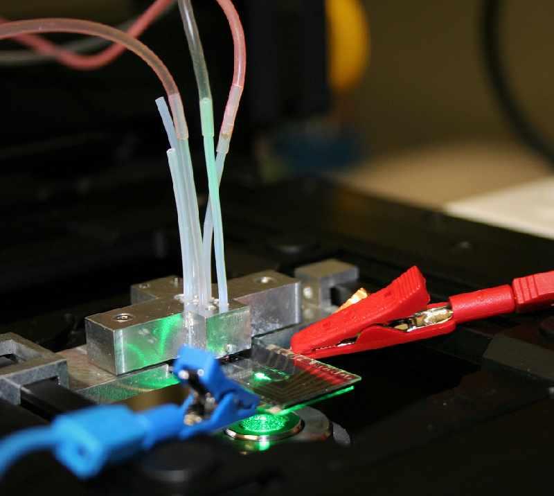 Eine Brennstoffzelle mit Anschlussklemmen im Labor.