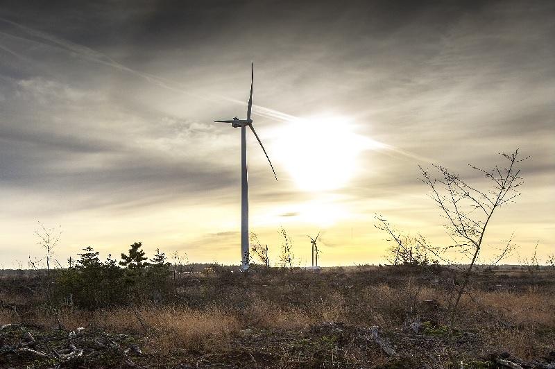 ZU sehen ist eine Vestas Windenergieanlage, eine ähnliche will die Bürgerenergiegenossenschaft Dörentrup-Wendlinghausen aufstellen.