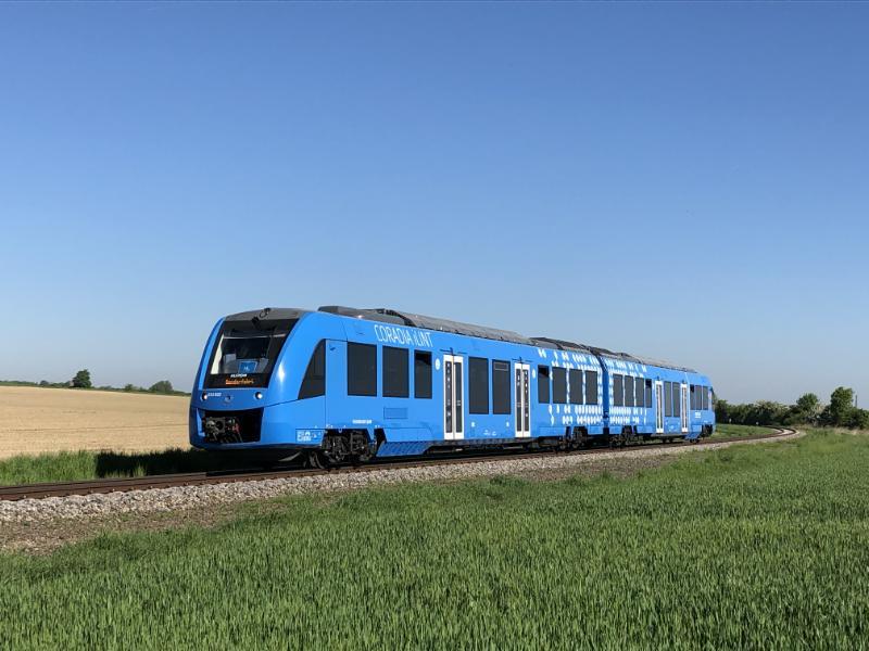Ein blauer Zug fährt durch eine Frühlingslandschaft.
