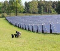 Zu sehen sind Sonnenkollektoren eines Solarheizwerkes die grüne Fernwärme liefern.