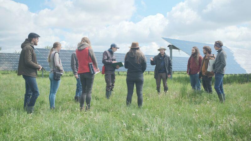 Zu sehen ist eine Gruppe von Student*innen des Projekts EULE inmitten einer Photovoltaik-Freiflächenanlage.