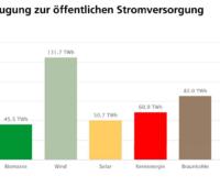 Zu sehen ist eine Grafik, die den Strommarkt in Deutschland 2020 zeigt.