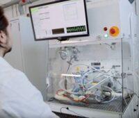 Zu sehen ist ein Elektrolyseteststand, wie es am Fraunhofer Hydrogen Lab Görlitz entstehen wird.