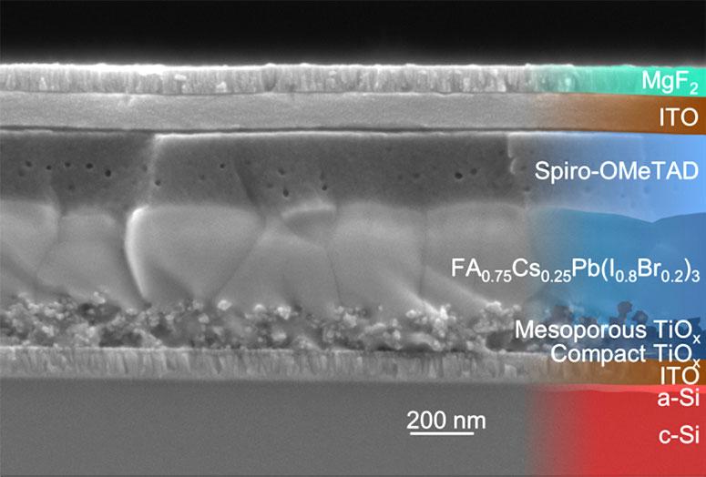 Rasterelektronenmikroskop-Aufnahme einer PV-Zelle