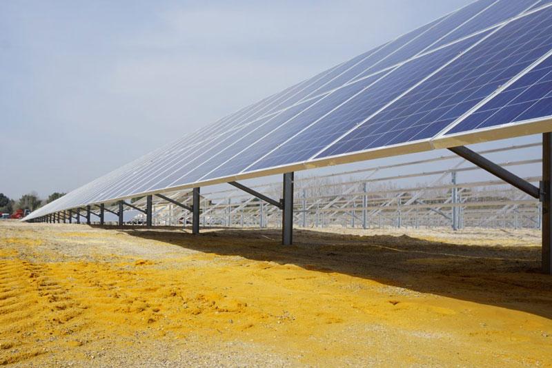 Eine Reihe von Photovoltaik-Modulen aus der Froschperspektive