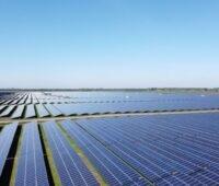 Solarmodule auf Flachland bis zum Horizont unter blauem Himmel.