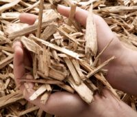 Biomasse wie Holzhackschnitzel sind beim Bonus für erneuerbare Wärme in der Novelle des Kraftwärmekopplungsgesetzes ausgenommen.