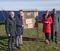 Vier Menschen links und rechts neben dem Kasten eines Insektenhotels. Im Hintergrund eine grße Photovoltaik-Anlage.