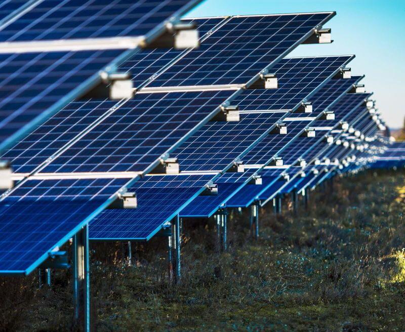 Eine Nahaufnahme zeigt eine Abfolge von aufgeständerten Solarmodulen auf der grünen Wiese