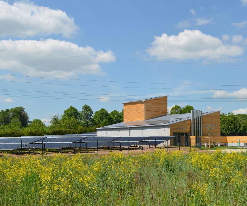 Eine Nahwärmezentrale mit Solarthermieanlage inmitten einer Wiese mit gelben Blumen
