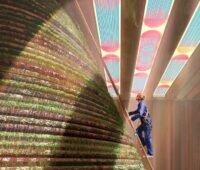 Zu sehen ist das Innere des niederländischen Pavillons zur Expo 2020 Dubai, für den das Architekturbüro V8 Architects organische PV in ein semitransparentes Photovoltaik-Solardach eingelassen hat.