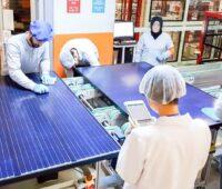 Wissenschaftlerinnen udn Wissenschaftler prüfen eine Anlage mit Solarmodulen.