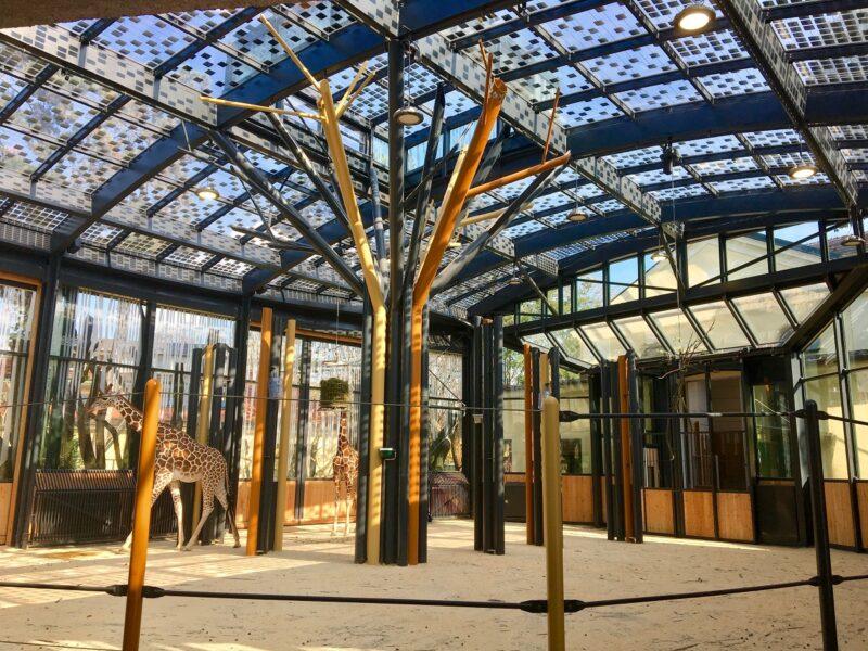 Zu sehen ist eine in das transparente Dach des Wiener Tiergartens Schönbrunn. Bald soll eine Photovoltiak-Pflicht für alle neuen Wiener Gebäude gelten.