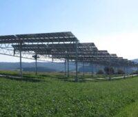 Zu sehen ist eine besondere Solaranlage nach der Innovationsausschreibungsverordnung. Es handelt sich um eine Agri-Photovoltaik-Anlage mit PV-Modulen über einer landwirtschaftlich genutzten Fläche.