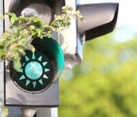 Grüne Ampel mit Sonnensymbol