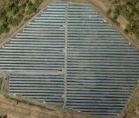 Zu sehen ist ein Solarpark, für solche Projekte wird die revolvierenden Kreditfazilität von Sunfarming benötigt.