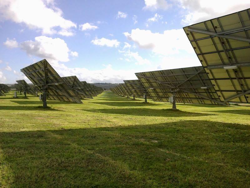Zweiachsig nachgeführte PV-Module auf grünem Grund und unter blauem Himmel.