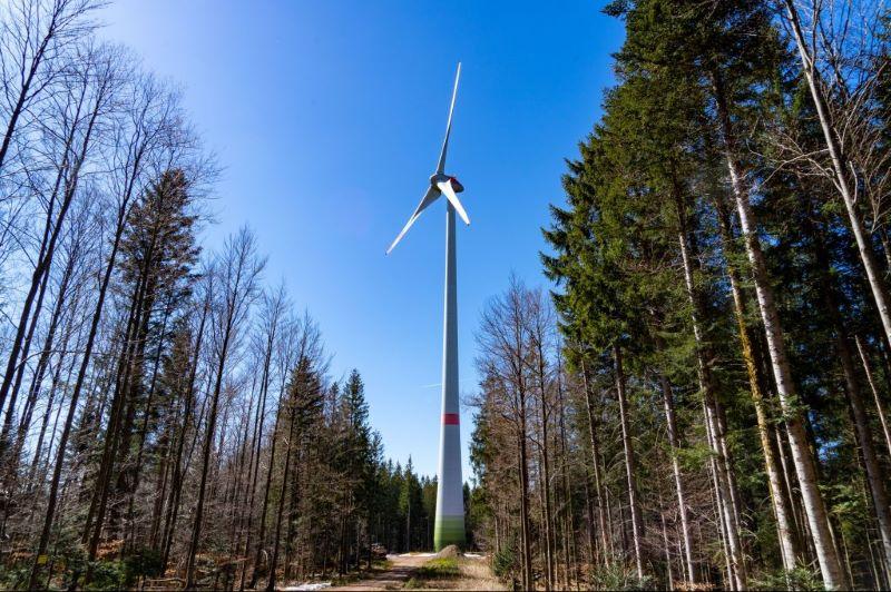 Eine Windenergieanlage steht im Wald zwischen Bäumen.