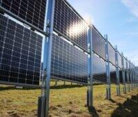 Zu sehen sind vertikale aufgeständerte Module, eine der untersuchen Bauformen in der Studie des TFZ zur Agri-Photovoltaik.