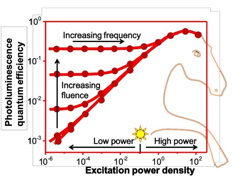Zu sehen ist ein zweidimensionales Diagramm in Form eines Perowskit-Pferdes, das helfen soll, die Photophysik der Perowskit-Photovoltaik besser zu verstehen.
