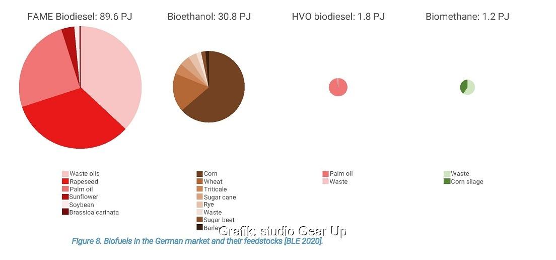 Zu sehen ist eine Grafik aus der Studie zur Treibhausgas-Einsparung durch Biokraftstoffe.