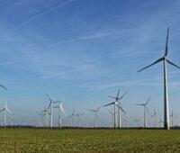 Windenergieanlagen auf flachem Terrain bis zum Horizont unter blauem Himmel.