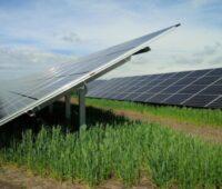 Blick auf Solarpaneele auf grüner Wiese.