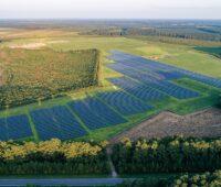 Zu sehen ist einer der Photovoltaik-Solarparks in den USA von ReNew Petra.