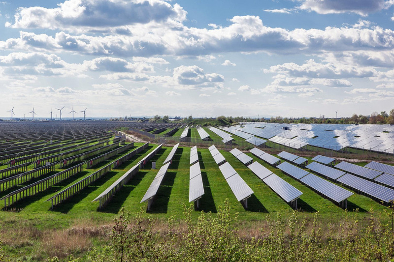 Photovoltaikmodule auf grüner Wiese im flachen Terrain und mit Windenergieanlagen im Hintergrund.