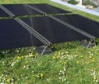 Eine Solaranlage mit röhrenförmigen Modulen auf einem begrünten Dach.