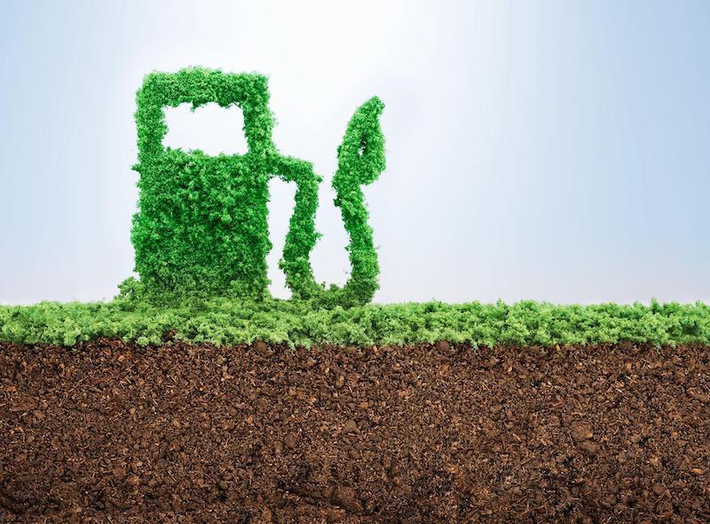 Grafik mit Tanksäule aus Blättern als Symbol für synthetische Kraftstoffe